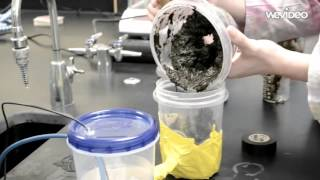 Creating a Microbial Fuel Cell