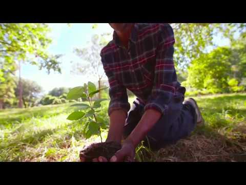 Konica Minolta Eco Vision 2050
