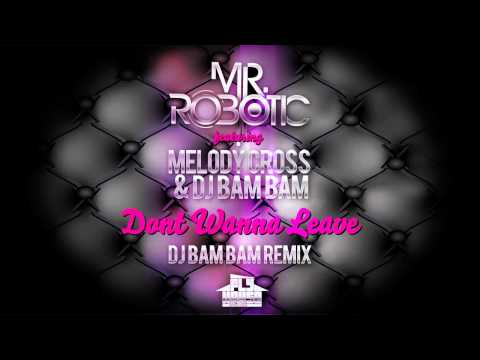 "Mr.Robotic feat. Melody Cross & DJ Bam Bam ""Dont Wanna Leave"" (DJ Bam Bam Remix) [PREVIEW]"