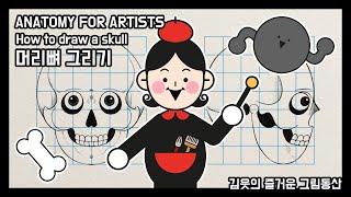 [김웃의 즐거운 그림동산] 미술해부학_머리뼈(두개골) …