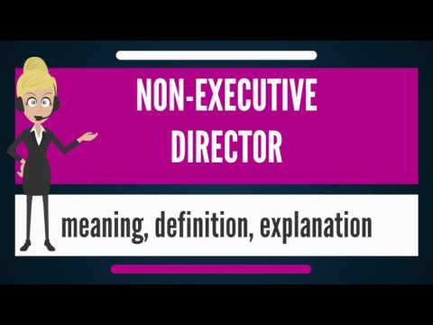 What is NON-EXECUTIVE DIRECTOR? What does NON-EXECUTIVE DIRECTOR mean? en streaming