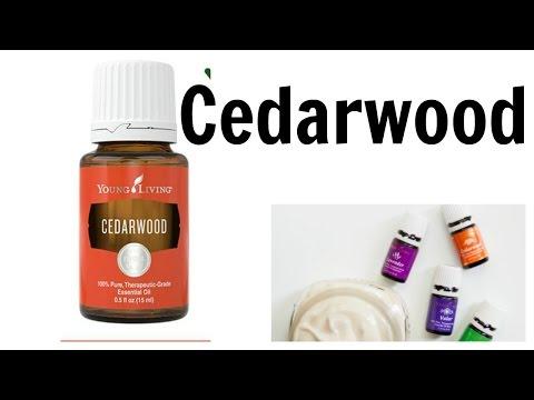 cedarwood-young-living-essential-oil-for-brain,-skin,-scalp,-hair,-and-sleep