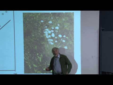 Carbon Cycling in Peatlands - Tim Moore, PhD, McGill University