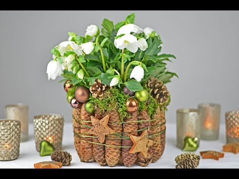 Diy christrose dekorieren mit fichtenzapfen moos i tischdeko f r weihnachten und winterzeit i - Weihnachtskugeln dekorieren ...