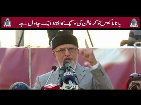 Panama Case Faqat 1 Chawal Hai