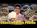 Unboxing Ratusan Ekor Kura Kura Sampe Bingung Itungnya  Mp3 - Mp4 Download