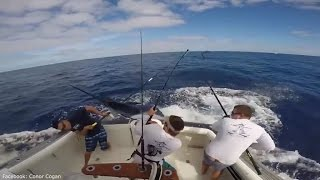 Fisherman almost impaled by 90kg giant marlin