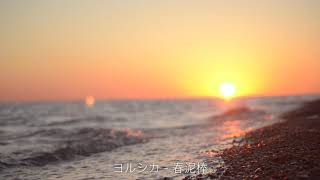 [PlayList] 노을과 청량 / 바닷가에서 듣는 반…