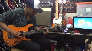 Joe Satriani - Always With Me,Always with You ( Cover )