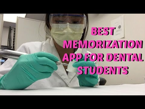 Dental School Vlog + Best Way To Memorize || Brittany Goes to Dental School