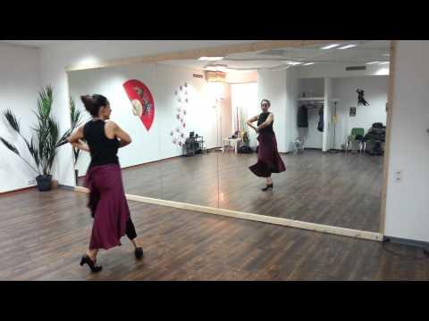 Flamenco Basic Combinations