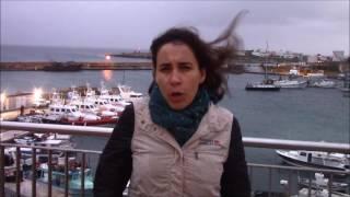 Update from the Mediterranean