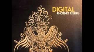 Digital - Space Funk (Rufige Kru Remix)