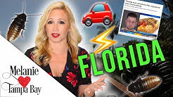 Worst Things About Living in Florida  Bugs, Severe Weather, Crazy News | MELANIE  TAMPA BAY