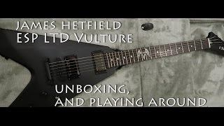 James Hetfield Vulture ESP LTD Guitar