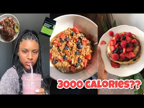 How To Easily Eat 3000 Calories In A Day Without Stuffing Your Face What I Eat In A Day ��