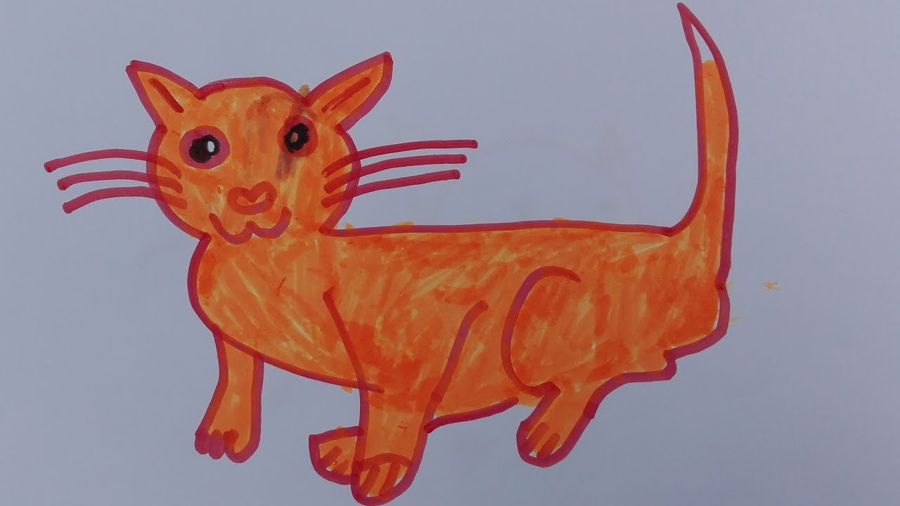 How To Draw A Cat Draw A Realistic Cat Draw A Cat Easy Draw A Cat