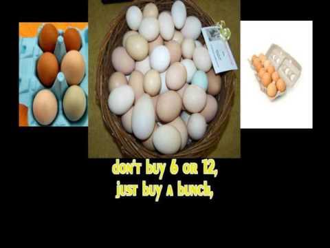 Scrambled Eggs  karaoke