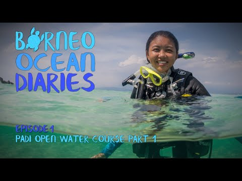 Video Of The Week | Taking the Plunge - PADI Open Water Course [4K] | Borneo Ocean Diaries (S01E01) | SZtv