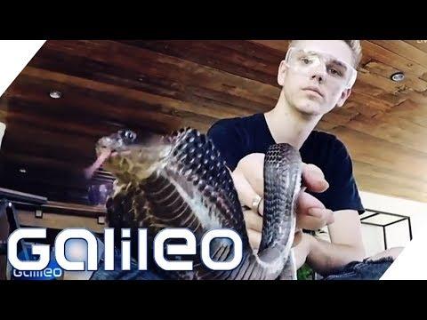 Der deutsche Schlangen-Teenie in Thailand | Galileo | ProSieben