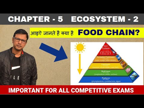 ENVIRONMENT: Ecosystem part 2; Food chain, Food web;Pyramids of ecosystem