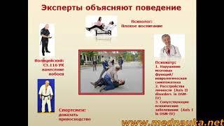 Высшие психические функции у животных. Психика животных. mednauka.net