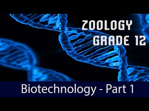Biotechnology: Principles and Processes- Part 1