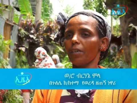 Addis ababa tsedat documantary final