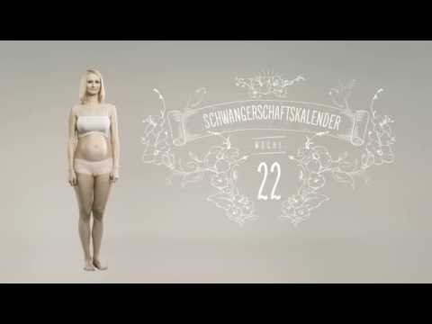 Schwangerschaft - 22. Woche (SSW 21)