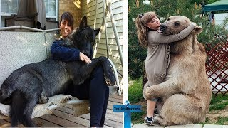 Top 11 SCARIEST Unusual Pets People Actually Own