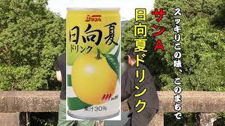 サンA(宮崎県農協果汁株式会社)で販売されている日向夏ドリンクのc...