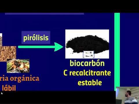 Biocarbón (biochar) para aumentar la producción vegetal y luchar contra el cambio climático