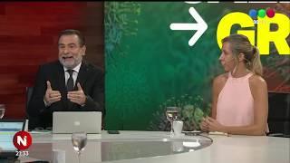 SALIDA GRADUAL DE LA CUARENTENA: ¿cómo será el fin del aislamiento? - Telefe Noticias