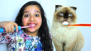 शफ़ा और उसके दिन का रूटीन बिल्ली के साथ।
