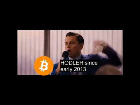 Bitcoin HODLER since early 2013 confronting new investors on recent crash
