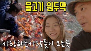라오스 물고기원두막 사랑하는사람들이 오는 식당