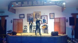 Video Espectáculo de baile flamenco de Álvaro Tomás Ortiz Gila download MP3, 3GP, MP4, WEBM, AVI, FLV Desember 2017