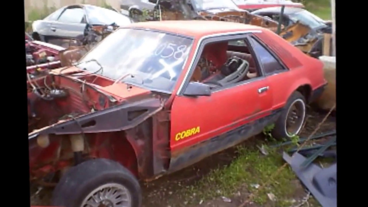 Ford Mustang Salvage Yard Fox Body Parts Restoration Junkyard Tour Sn New Edge For Sale