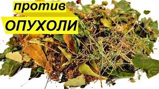 Трава, которая убирает раковые клетки. Противоопухолевый чай. ПРОФИЛАКТИКА РАКА