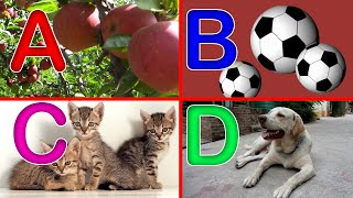 ABC Phonics Song With Videos । A For Apple B for Ball C for Cat  । ABCD Alphabet । Alphabets HD
