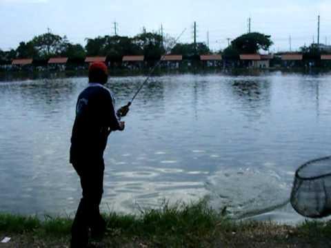 แข่งตกปลา ชิงเงินหมื่น