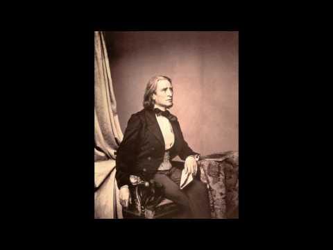 12 Etudes d´execution transcendante. Franz Liszt by Carol Rosenberger