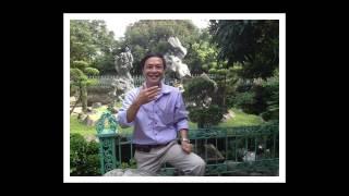 THÀNH PHỐ HOA PHƯỢNG ĐỎ. Sáng tác: Lương Vĩnh