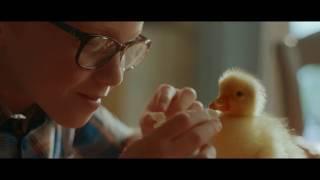 Geniet van de feesten zonder foie gras thumbnail
