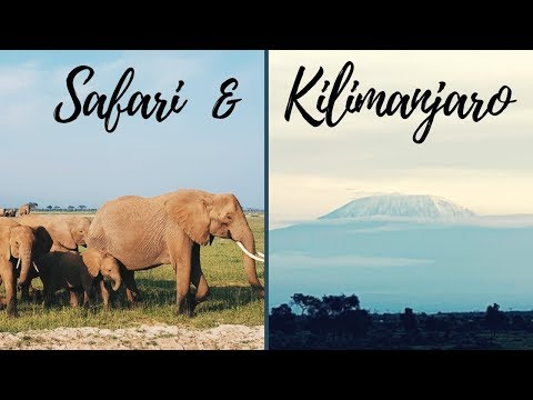 Amboseli Safari: STUNNING Kilimanjaro Views | Kenya Travel Vlog (Circle Of Life)