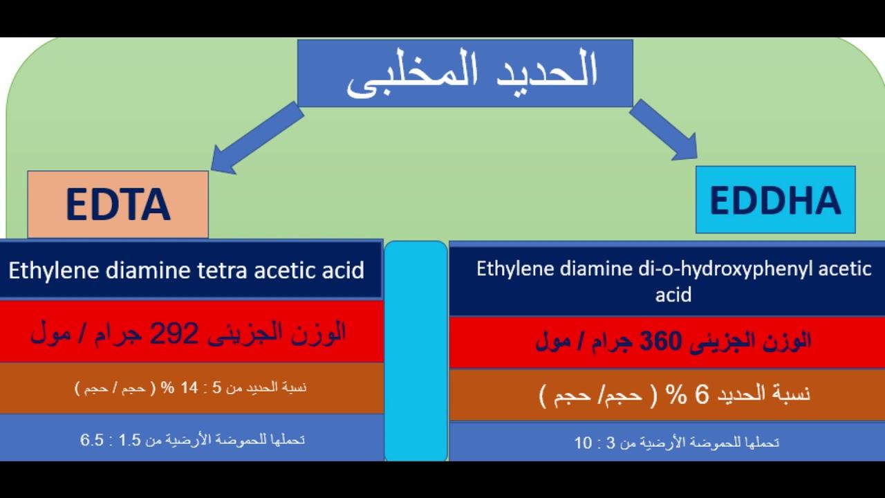 الفرق بين صورة الحدبد EDTA   وال  EDDHA .. وأيهما تفضل فى الرش الورقى أو الأضافات الارضية ...