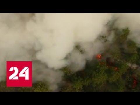 На тушении пожаров в Забайкалье задействовали парашютистов-десантников
