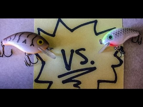 LURE TEST: Bitsy Minnow Vs. Rebel Wee-R - Fishing Off The Hook