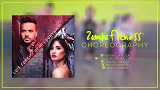 ECHAME LA CULPA - LUIS FONSI & DEMI LOVATO | Zumba ® Fitness Choreography  - Vanina La Rosa