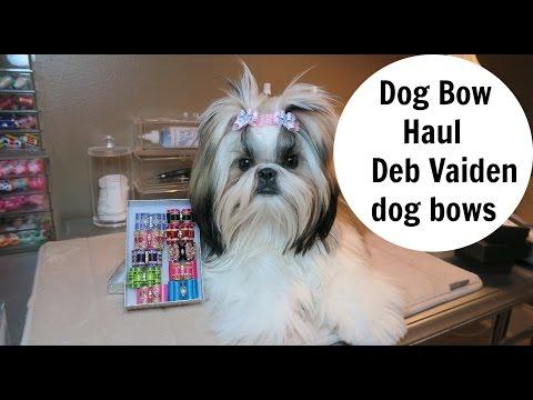 Dog Bow Haul - Vaiden Dog Show Bows